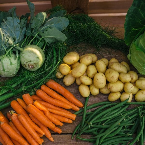 Example of a CSA bounty