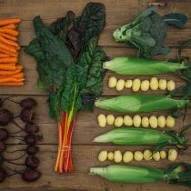 Riverbend Gardens CSA - Bounty